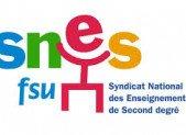 Du SNES de Lyon: Carte des langues