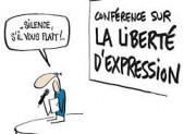 Liberté d'expression des fonctionnaires