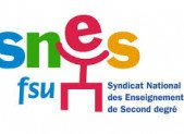 Enquête du SNES: LV au collège et au lycée